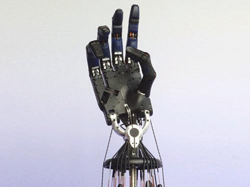 Shadow Dextrous Hand Robotic Hand System Virtual Realities